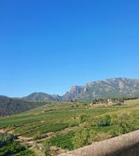 Un des paysages du Pays d&aposArt et d&aposHistoire Haut Languedoc et Vignobles