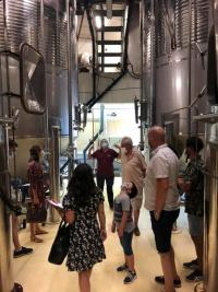 Visite dans une cave de vinification à Thezan-les-Béziers